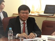 Experts of VN, Russia discuss cooperation in economic globalisation