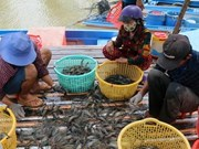 Aquatic product exports decrease in five months