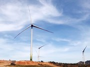 Vietnam needs stable legal framework for wind power: workshop