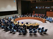 Vietnam well positioned to fulfil role in UNSC: veteran diplomat