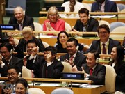 Vietnam's election to UNSC proves its prestige on int'l arena