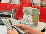 Reference exchange rate up 10 VND on week's first day