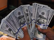 Reference exchange rate up by 5 VND on June 18