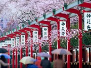 Vietnamese visitors to Japan up 41.6 percent in May