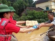 Thanh Hoa, Houaphane's red cross societies review joint work