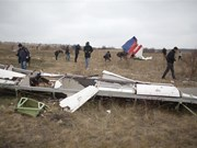 Australian MH17 families reach settlement with Malaysia Airlines