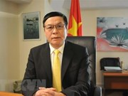 EU-Vietnam trade, investment deals important to both sides: diplomat