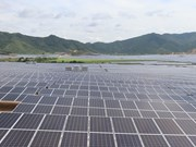 Growth demand fuels solar power boom in Vietnam