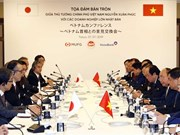Vietnam welcomes high-quality projects from Japan: PM