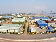 Tien Giang's exports grow over 11.3 percent in H1
