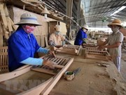 Wood exports bring home nearly 5 billion USD in H1