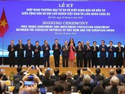 EVFTA to hasten movement of manufacturers to Vietnam: analysts