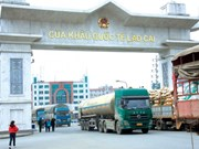 Trade through Lao Cai international border gate goes down