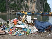 Tourism sector fights against plastic waste