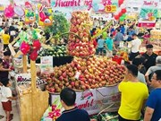Binh Thuan's dragon fruits promoted in Hanoi