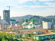 Cement sector expected to continue growth