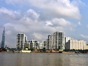 HCM City's districts join battle with illegal sand miners