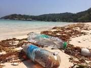 ASEAN Senior Officials on the Environment Meeting discuss marine debris