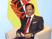 Brunei celebrates Sultan Haji Hassanal Bolkiah's 73rd birthday