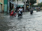 HCM City to have new climate change response plan