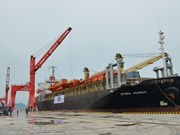 Vinh Tan int'l sea port welcomes first foreign vessel