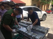 Hoa Binh police bust trafficking of 100 heroin bricks