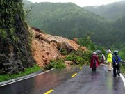 Vietnam loses 860 million USD to natural disasters last year