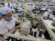 HCM City firms' exports increase by 9.2 percent