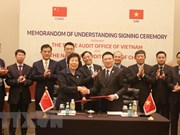 Vietnam steps up international audit cooperation