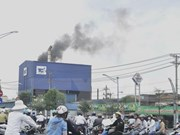 Japan supports Vietnam to mitigate greenhouse gas emissions