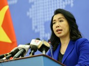 Vietnam consistently protects sovereignty in East Sea: Spokeswoman