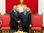 Party official: Vietnam does best to foster ties with Laos