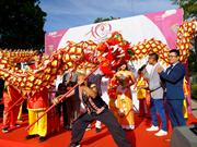 Festival spotlights Vietnamese culture, cuisine in Germany