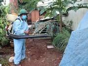 Hanoi records over 1,600 dengue fever cases