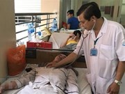 105,000 dengue fever cases reported in seven months