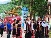 Third Ngoc Linh ginseng festival opens in Quang Nam
