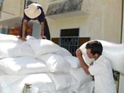 Government allocates rice for Dak Nong province