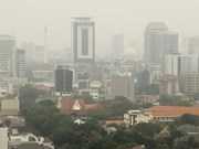 Indonesia curbs private cars to cut air pollution