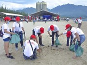 Over 800 volunteers join hands in cleaning Da Nang beach