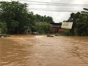 Floods take heavy toll on Central Highlands