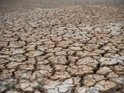 Mekong Delta to face earlier, more severe salinity, droughts