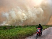 High risks of forest fires in many ASEAN countries