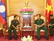 Vietnamese, Lao armies enhance ties in internal political protection
