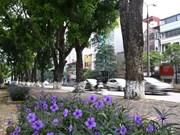 Seminar suggests green ideas for Hanoi