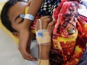 Myanmar: Dengue fever kills 48, infects over 10,700 people