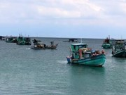 Khanh Hoa works to fight IUU fishing