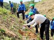 Japan helps Vietnam respond to climate change
