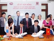 US consultants for Vung Ang thermo-power plant