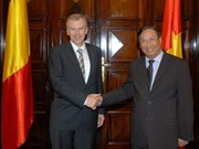 Vietnamese, Belgian ministerial talks focus on economy