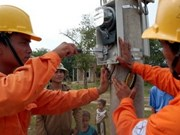 EVN speeds up power supply to rural areas